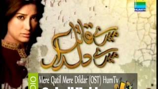 Sohail Haider - OST Mere qatil mere dildar - Hum Tv
