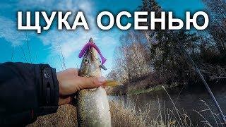 Ловля на малой речке поздней осенью