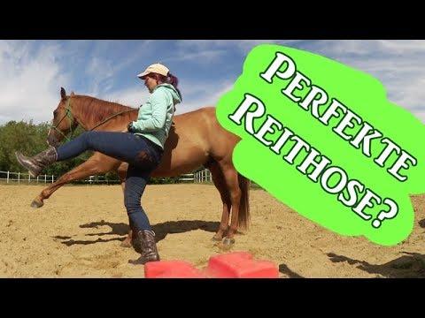 Die PERFEKTE Reitjeans??? 4 Hosen im Test | Serenity Horses