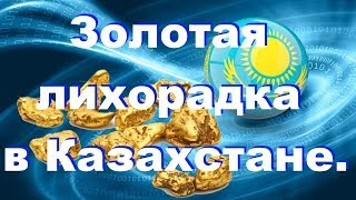 Как не пропустить все самое интересное золотая лихорадка в Казахстане.