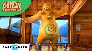 Grizzy și lemingii   Ursul cu arici   Boomerang