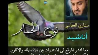 تحميل اغاني نوح الحمام - Mishary Al Afasi . مشاري العفاسي MP3