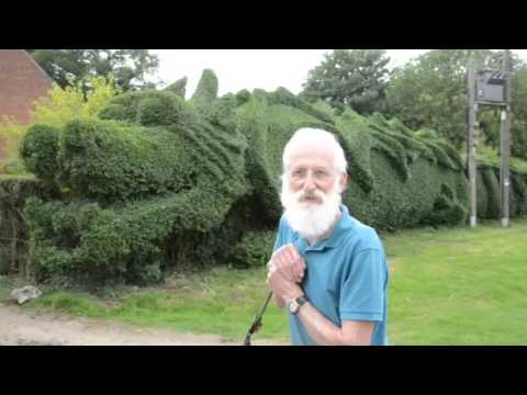 John Brooker with his dragon shaped hedge, East Rudham