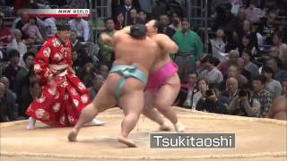 нокаут в сумо одним ударом