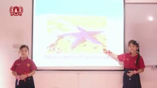 [WSI] B2.1 Hải Anh & Ngọc Trâm - Presentation