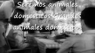 Porno for pyros - pets subtitulada en español