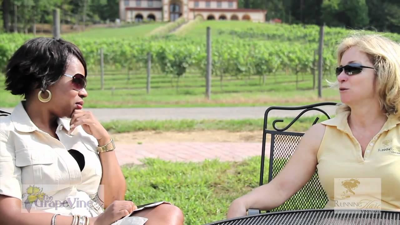 Vineyard Online Interview/Tour