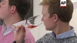 Immersive experience whisks wine lovers to Champagne