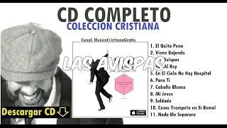 Las Avispas-Juan Luis Guerra