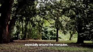 Sampa (curta-metragem documental de Marcelo Galvão)