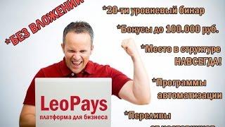 #LeoPays   Краткий обзор универсальной платформы для бизнеса