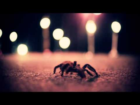 "The Missing ""Spiderbites"" Official Music Video"