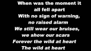 Wild At Heart   Birds Of Tokyo Lyrics