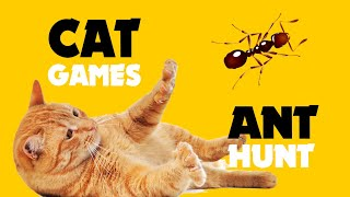 CAT GAMES ★ ANT HUNT on screen