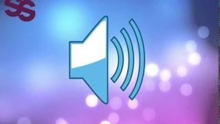Efectos De Sonido Gratis - Sonido De Gaviotas [Free Sound Effects ]
