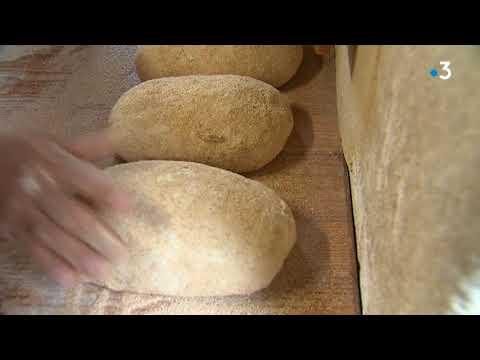 Nîmes : il fabrique son pain avec un blé datant du Moyen-âge