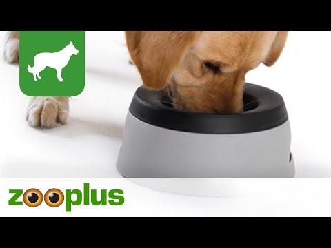 Hunter Reisenapf für Hunde | zooplus