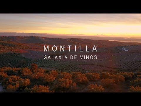 Montilla, galaxia de vinos