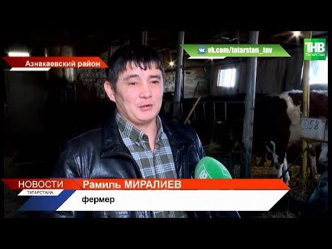 Три миллиона рублей по гранту «Агростартап», чтобы построить бизнес на селе | ТНВ