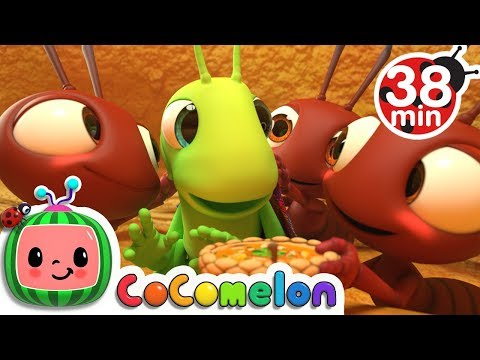 The Ant and the Grasshopper +More Nursery Rhymes - CoCoMelon