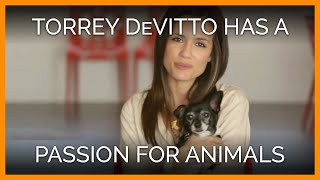 Torrey DeVitto's PETA Video With Her Dog Beau