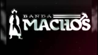 La niña fresa Banda Machos