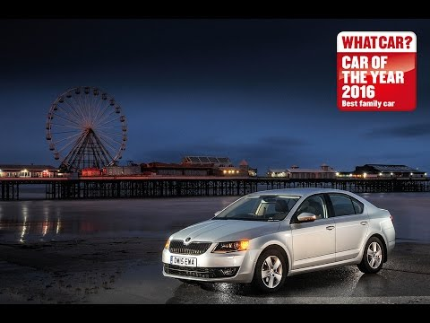 Skoda Octavia – 2016 What Car? Family Car of the Year | Sponsored