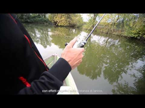 Video un salmone che pesca su Kola