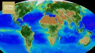 В NASA сделали ролик о последствиях изменения климата за последние 20 лет  [Age0+]