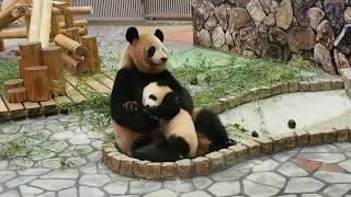 彩浜ちゃんを抱き寄せて抱きしめる良浜ママ♡愛情いっぱい♡