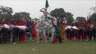26 March Display (Rajshahi Polytechnic Institute Rover Scout Group)