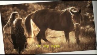 Beautiful in My Eyes - Joshua Kadison (lyrics) HD