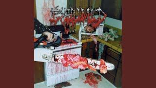 In My Human Slaughterhouse