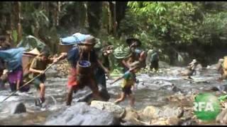 Thousands Face Food Shortage In Phapun, Karen State