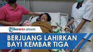 Ditinggal Suami Tanpa Kabar, Ibu di Kupang Berjuang Lahirkan Bayi Kembar Tiga Seorang Diri