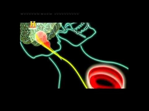 Lombalgia e attacchi di panico
