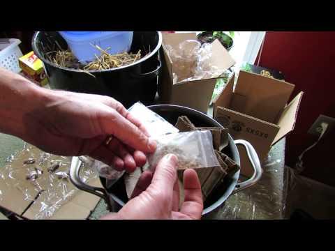 Tablets mula sa mga halamang-singaw kuko sa paa rumikoz