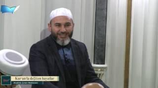 Kur'an'la değişen hayatlar--(Aile 3) (Sağlam Ve Huzurlu Ailenin Temeli)--İdris Polat