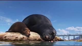 Finding Dory (Hledá se Dory): Sea Lions (Tuleni) (Czech)