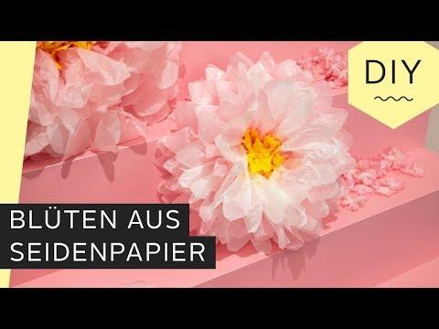 DIY: Blüten aus Seidenpapier basteln | Roombeez – powered by OTTO