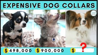 Top 7 - The Most Expensive Designer Dog Collars That You Can Buy For Your Dog Or Puppy || Monkoodog