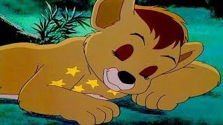 SIMBA RE LEONE   Simba The Lion King   Episodio 1 Completi   Italiano   Italian   [KIDFLIX]