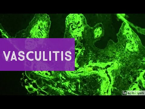 Papiloma y herpes simple