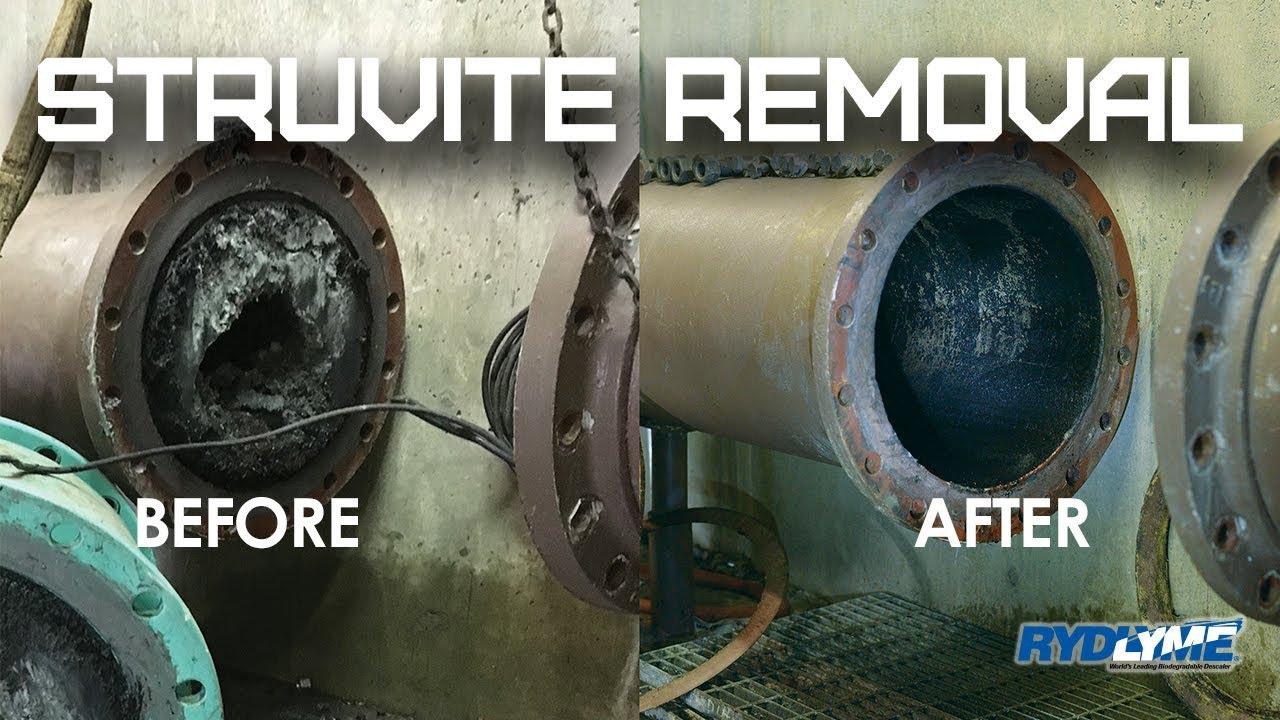 RYDLYME Struvite Removal