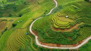 Amazing Rice Terraces in Mu Cang Chai, Yen Bai