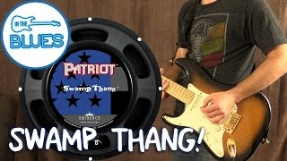 Eminence Swamp Thang Speaker in a Fender Blues Deluxe