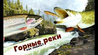 Ловля рыбы в горных рек