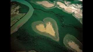 Terane Qumral Musa Musayev - Sevgi dolu dunyamiz