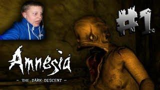Pelataan Amnesia - Osa 1 - FACECAM!!!