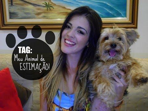 TAG: Meu Animal de Estimação - por Bianca Oliveira